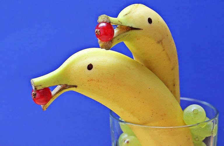 delfin-bananas-1737836_1920